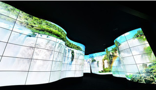 LG создала OLED-каньон на CES2018