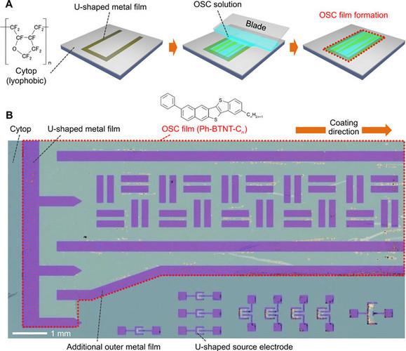 Японцы научились печатать быстрые TF-транзисторы из органики