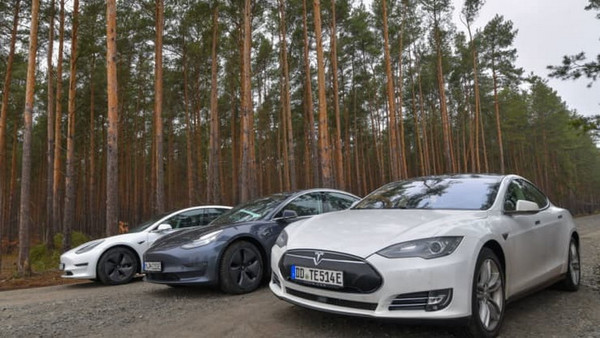 Строительство завода Tesla под Берлином затягивается. Сроки сорвали змеи и ящери