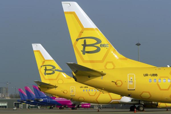 Bees Airline начинает продажу авиабилетов на международные регулярные рейсы